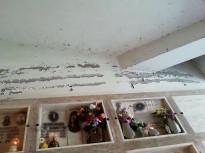 cimitero_di_rieti_1