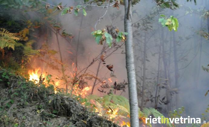 incendi_incendio_bosco_foresta_1