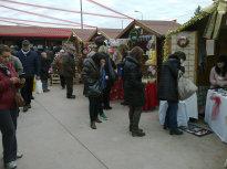mercato_mako_micioccoli_4