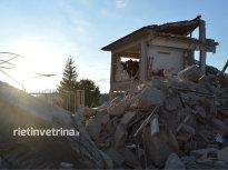 terremoto_amatrice_24_08_16_40