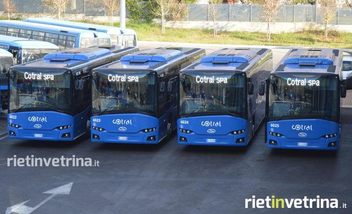 nuovi_bus_cotral_12