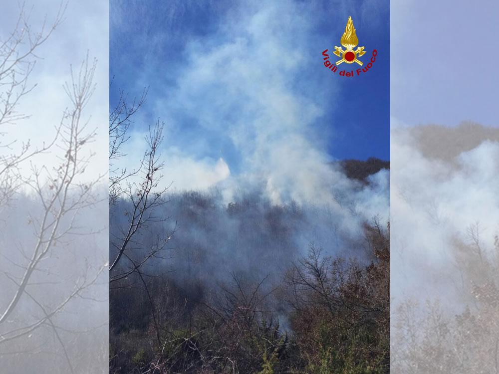 vigili_de_fuoco_incendio_bosco_pompieri4