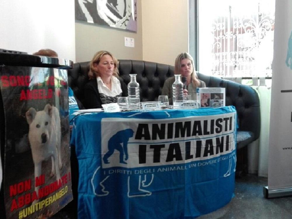 animalisti_italiani_onlus_amatrice
