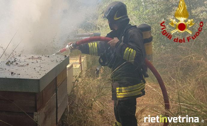 incendio_sterpaglie_poggio_san_lorenzo_07_08_17_a