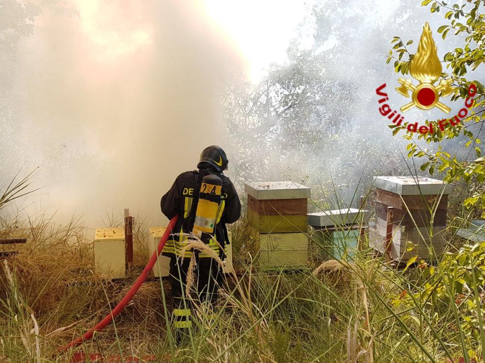 incendio_sterpaglie_poggio_san_lorenzo_07_08_17_b