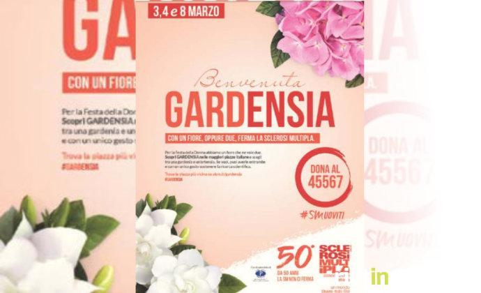 aism_gardensia
