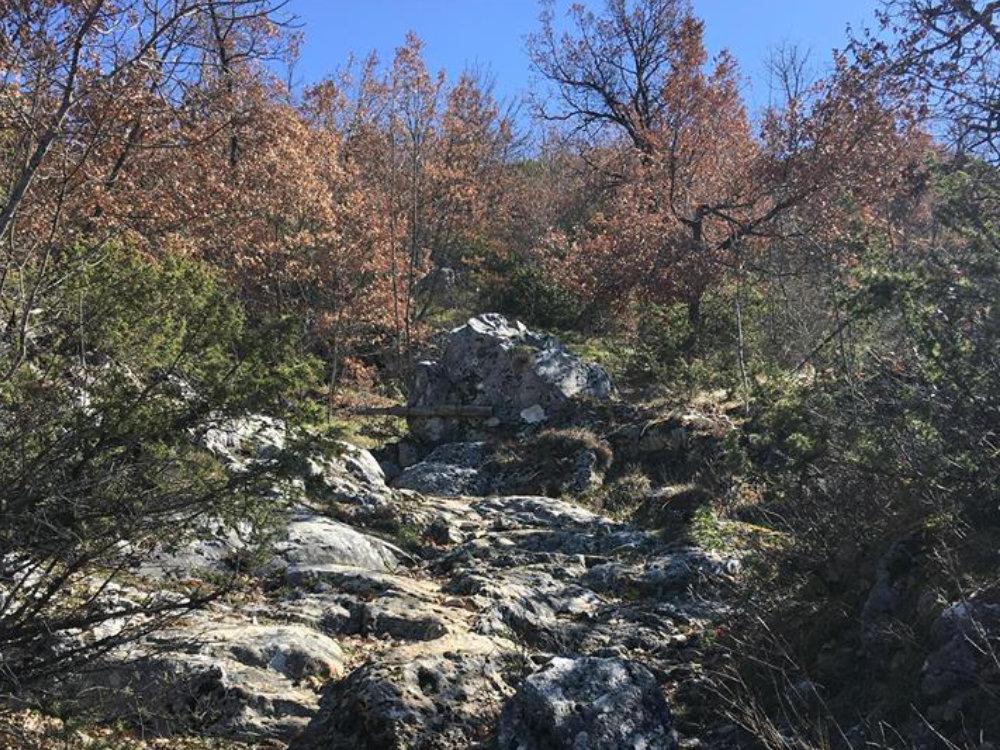 escursione_federica_d'ascenzo_festival_valli_e_montagne_2018_sant_elpidio_5