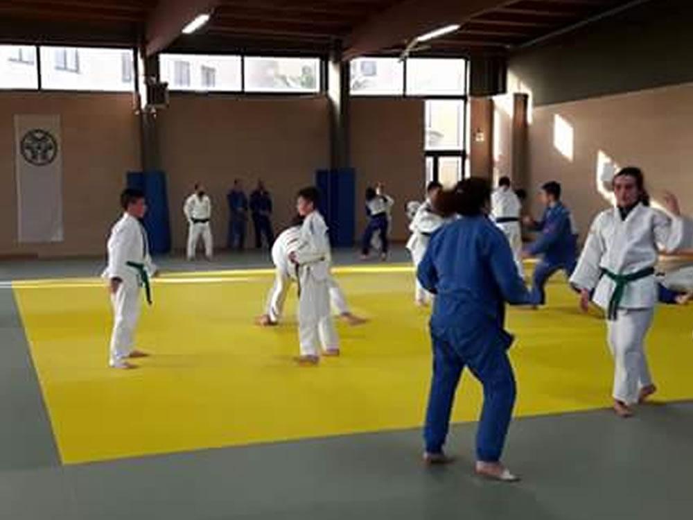 judo_allenamenti_ostia7