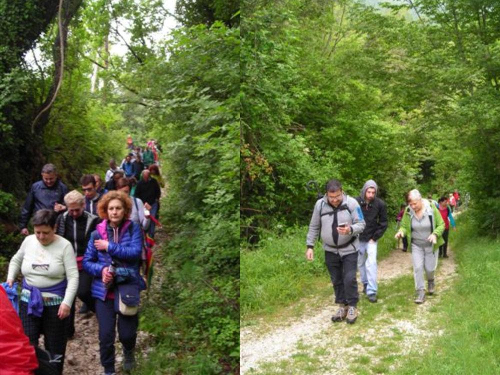 camminata_sul_cammino_di_francesco_dal_santuario_la_foresta_al_santuario_di_fontecolombo_6